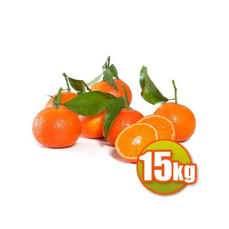 15 kg di Clemenvilles Mandarini