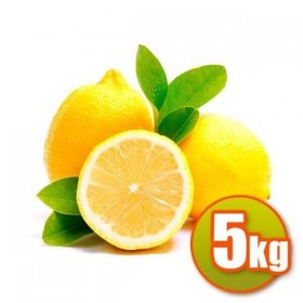 Limoni Valencianos 5kg