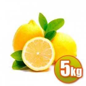 Zitronen Valencianos 5kg