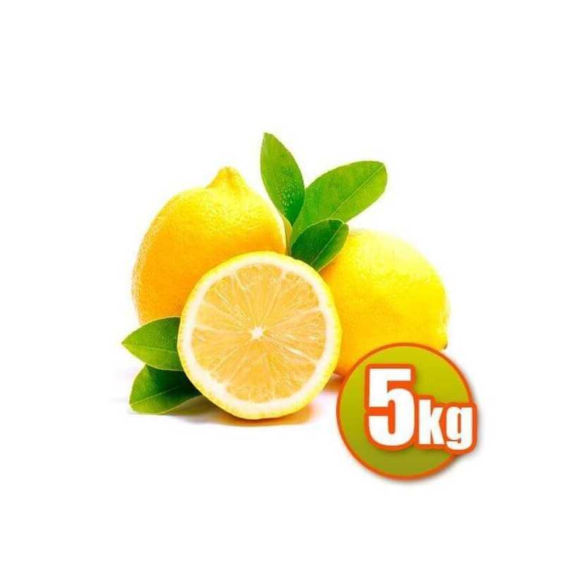 Limones Valencianos 5kg