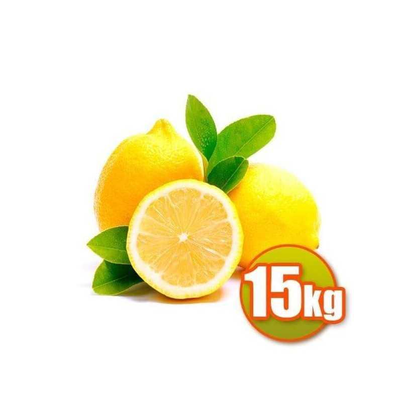Zitronen Valencianos 15 kg
