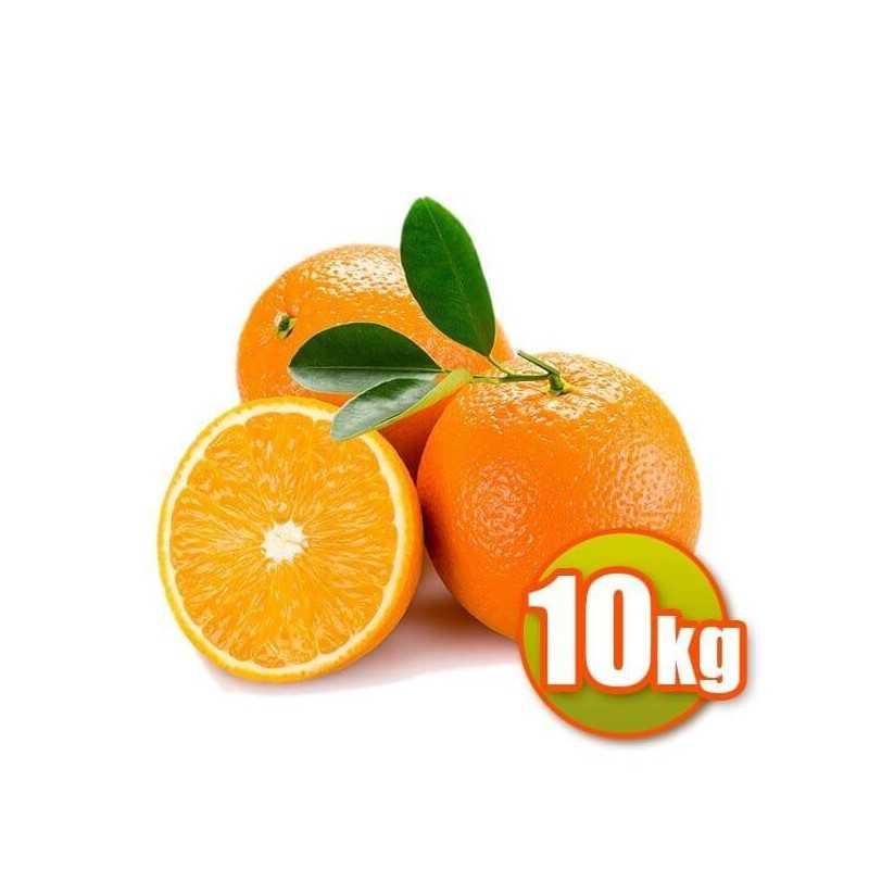 10 kg d'oranges de table Navelina