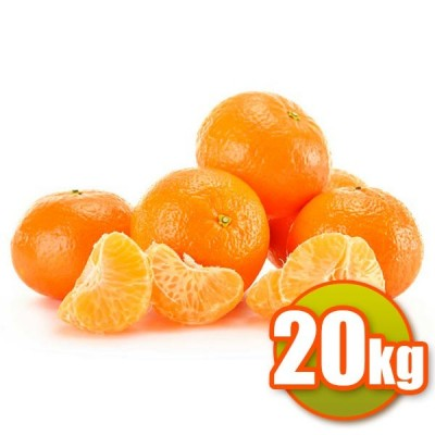 20Kg de Mandarines Clemenules