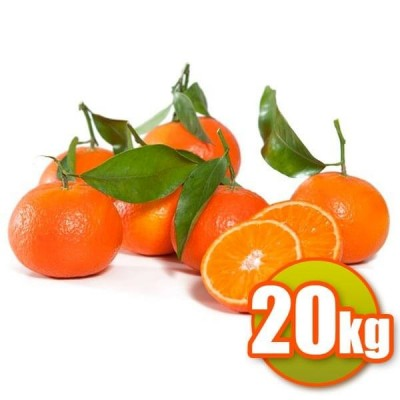 20kg de Mandarines Clemenvilles
