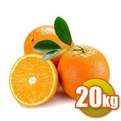 20Kg de Naranjas de Mesa Navelina