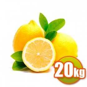 Valencianos citrons 20kg