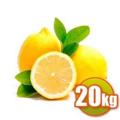 Zitronen Valencianos 20kg