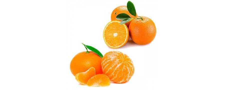 caselle combinate di arance e mandarini in linea