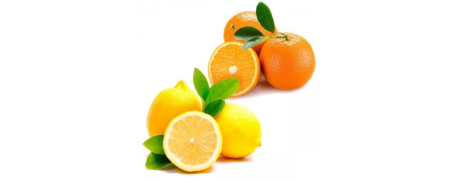 Orangen und Zitronen Dessert