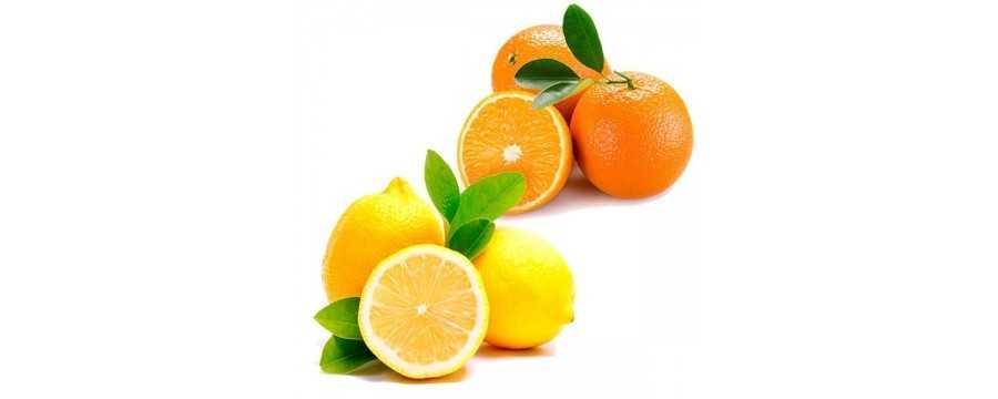 Oranges and lemons dessert